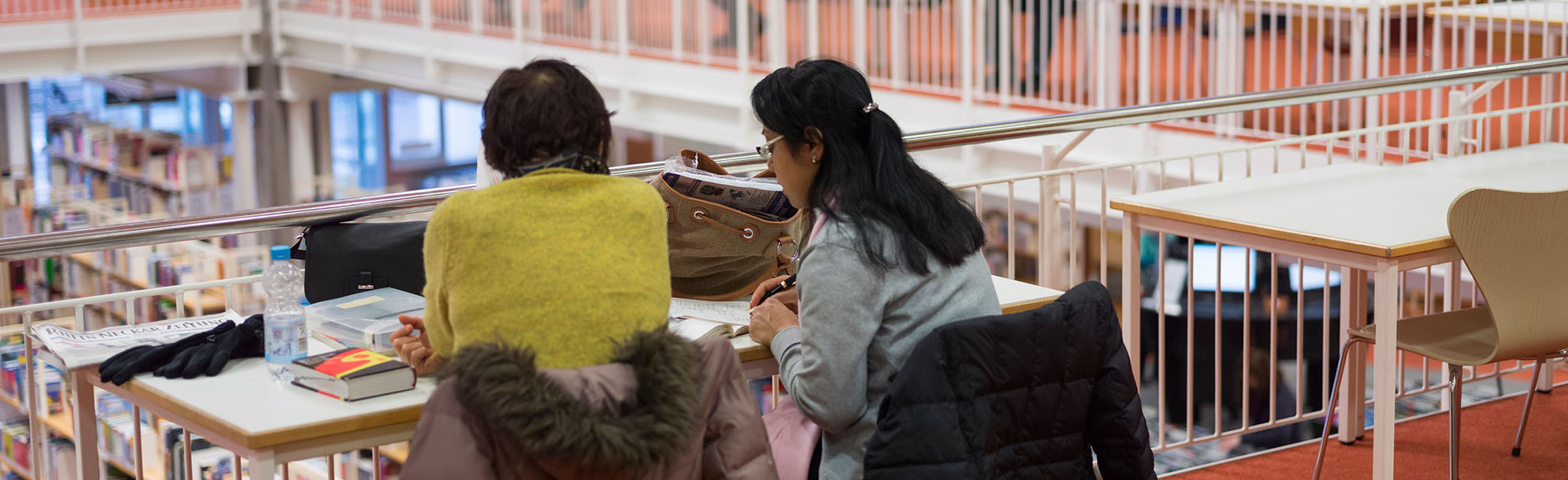 Two students studying in the library. (Photo: Diemer)