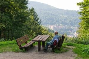Space to breathe – Heidelberg's city forest has achieved certification as a 'recreational forest'. (Photo: Anspach)