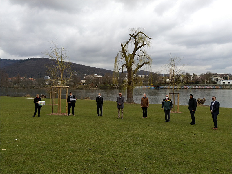 Club 25 heidelberg euro Solutions for