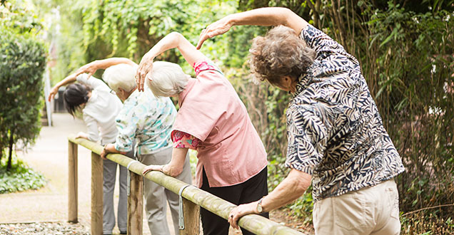 Sports and exercise activities for seniors (Photo: Arndt)