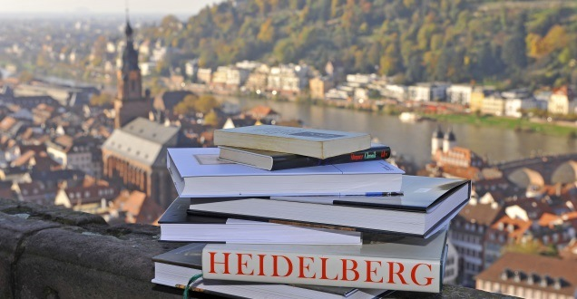 Stack of books in front of the skyline of Heidelberg (Photo: Dorn)